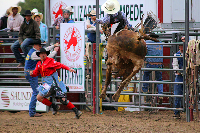 bull-riding-rodeo