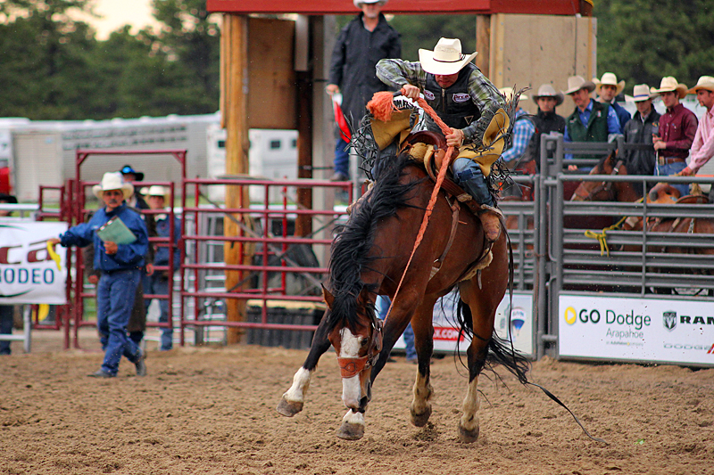 elizabeth-stampede-rodeo-colorado-usa