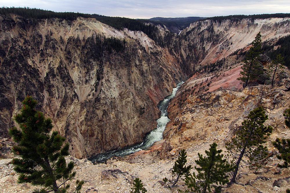 grand-canyon-of-the-yallowstone