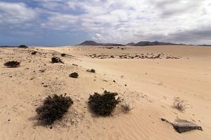 parque-natural-de-las-dunas-de-correlejo-fuerteventura