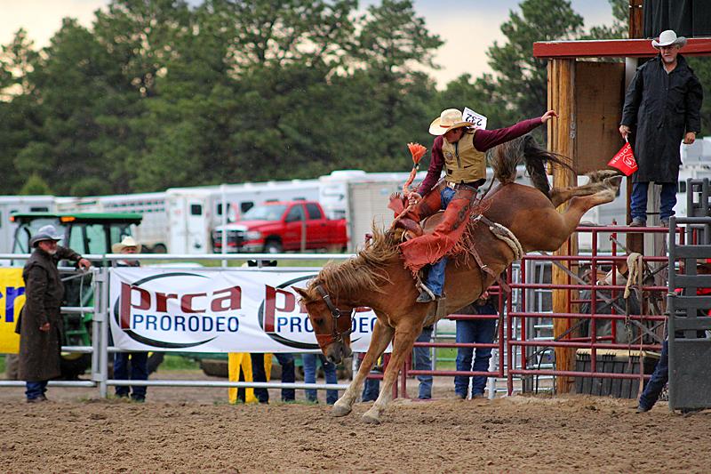 typisch-usa-rodeo