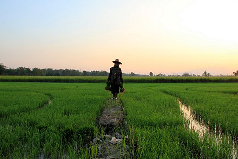 sukhothai-kleine-weltreise