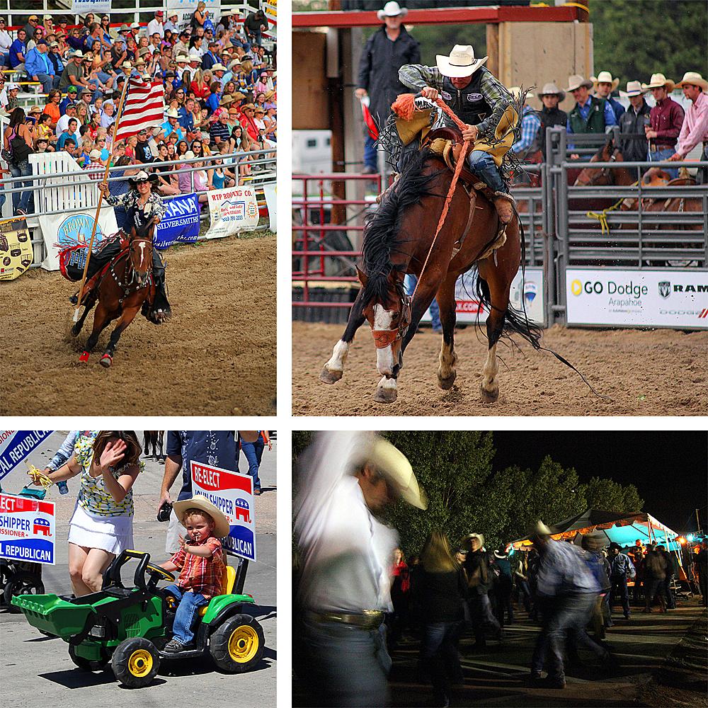 elizabeth-rodeo-stampede