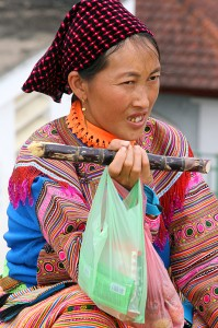 flower-hmong-bac-ha-vietnam