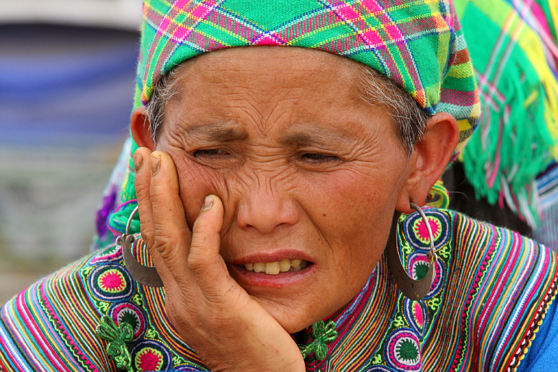 flower-hmong-back-ha-vietnam
