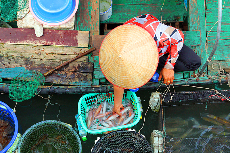fischer-halong-bucht-vietnam