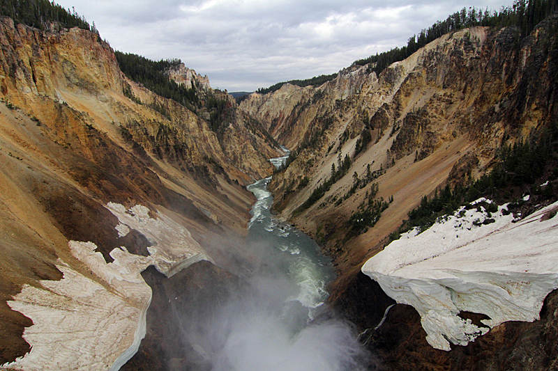 grand-canyon-yellowstone-national-park