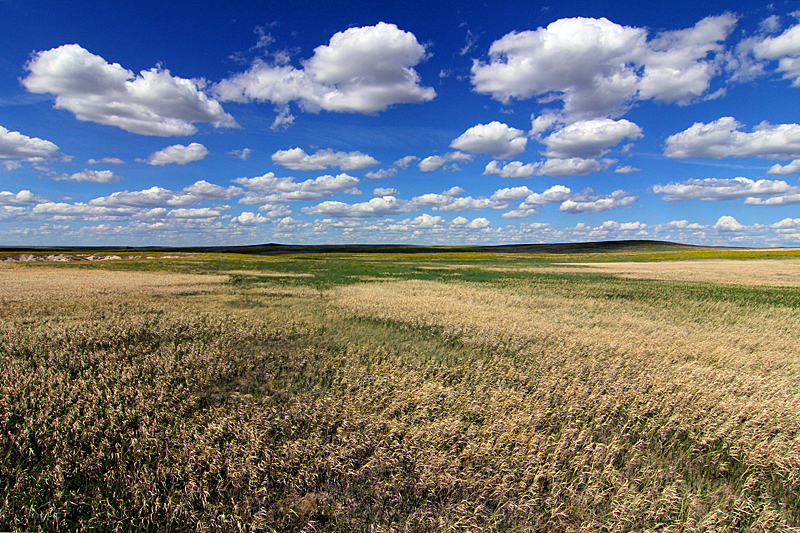 great-plains-prarie