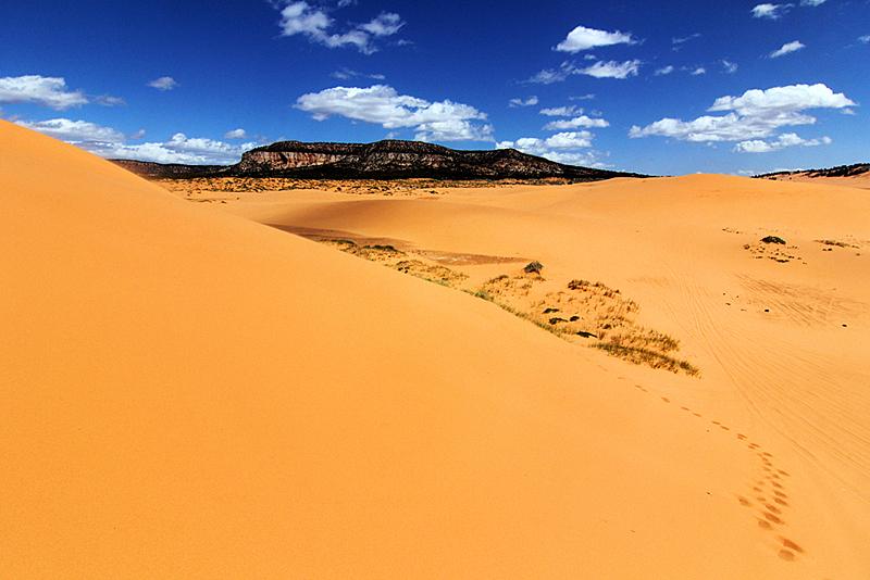 usa-reiseroute-coral-pink-sand-dunes-state-park-utah
