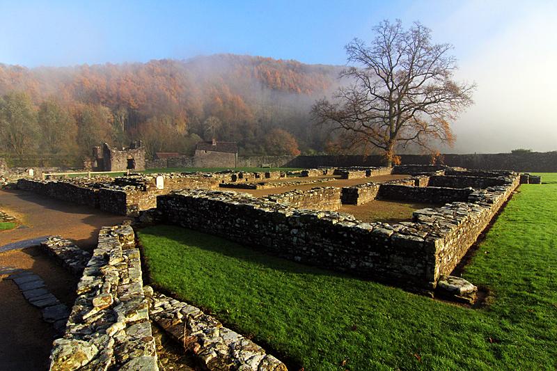 kloster-ruine-tintern-abbey