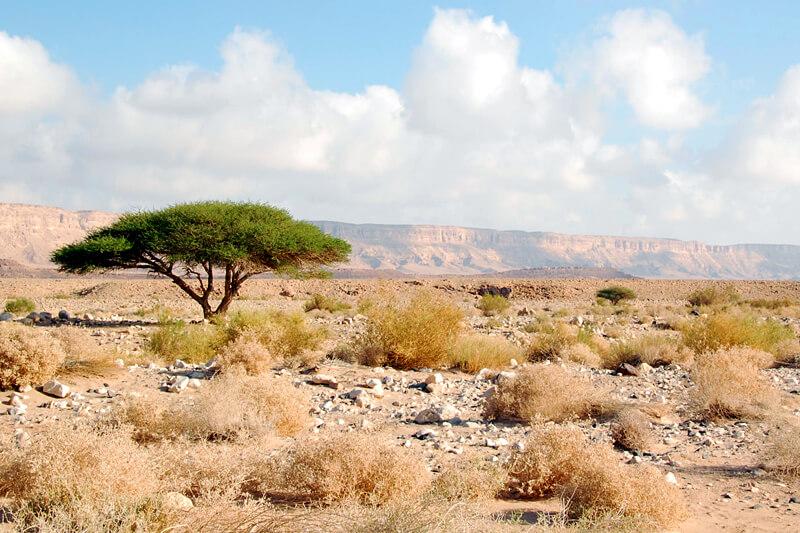 israel-reise