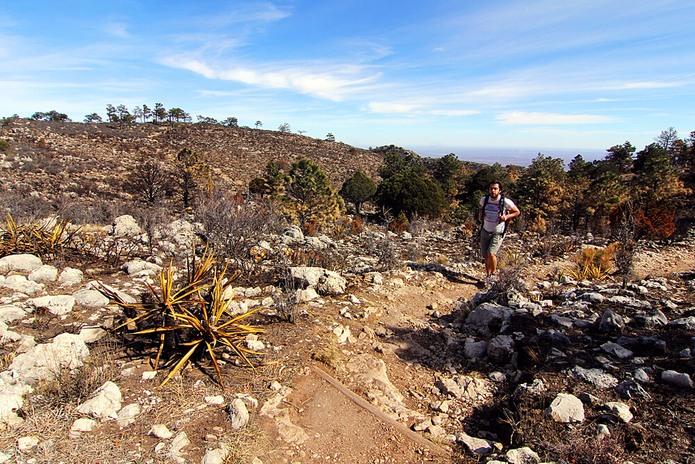 guadalupe-mountains-national-park-wandern
