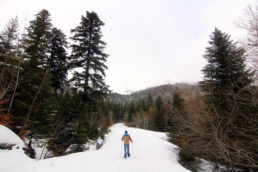 wandern-auvergne-winter