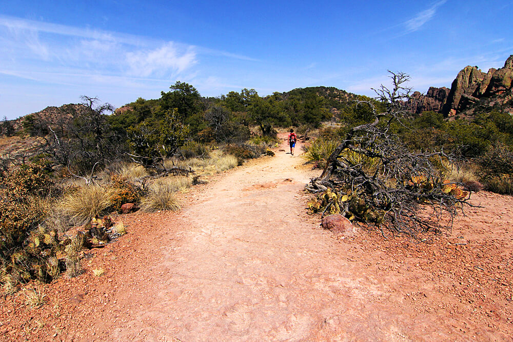 hiking-big-bend-national-park (1)