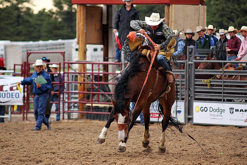colorado-sehenswuerdigkeiten-elizabeth-stampede-rodeo
