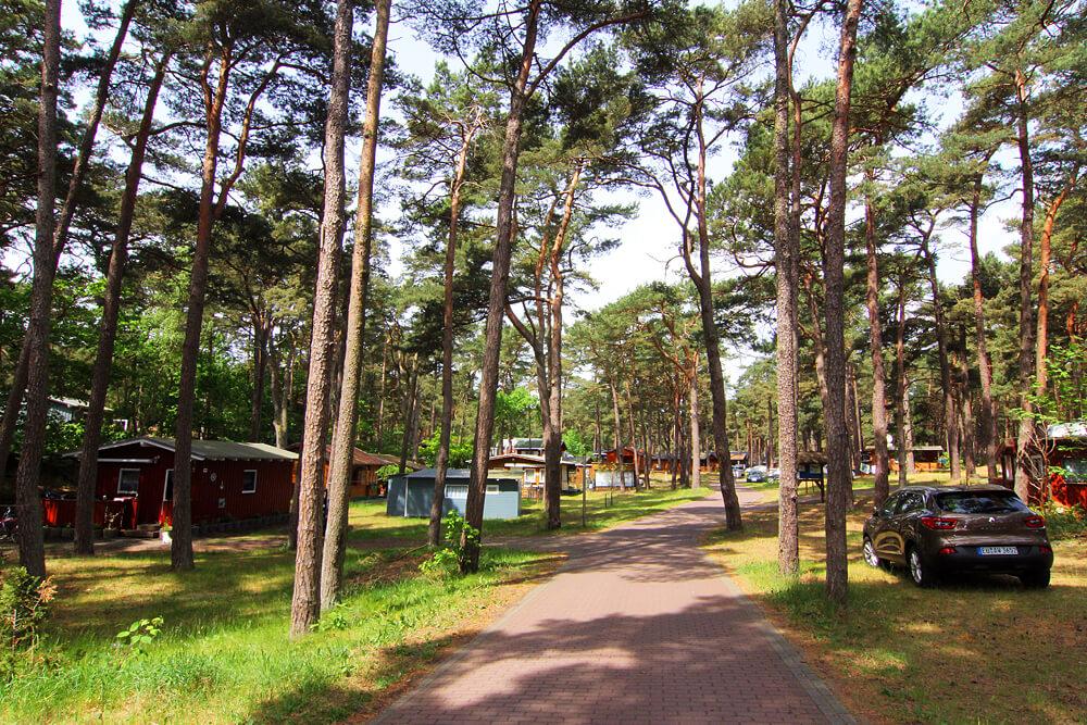 camping-goehren-ruegen