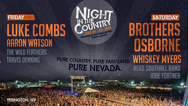 country-music-festival-night-in-the-country